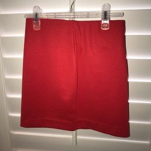 Red Mini Skirt : Fitted